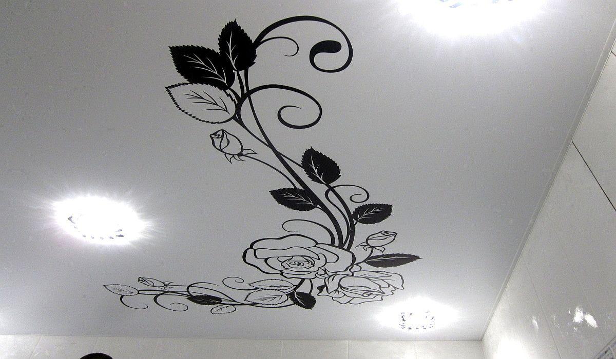 Įtempiamu lubų raštai ir ornamentai 2